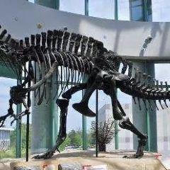 自然科學博物館用戶圖片