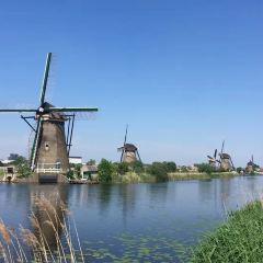 鹿特丹用戶圖片