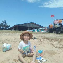 Golden Sandy Beach Bathing Beach User Photo