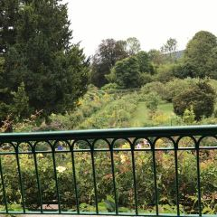 莫奈花園用戶圖片