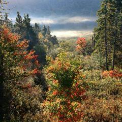 Cape Breton Highlands National Park User Photo