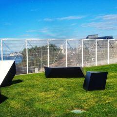奧林匹克雕塑公園用戶圖片