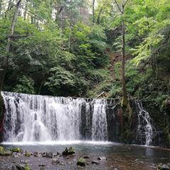 國家吊水壺森林公園用戶圖片