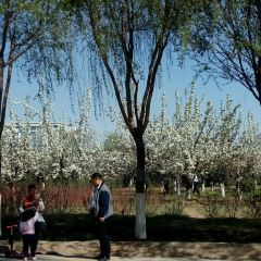 Donghu Ecology Tourism Area User Photo