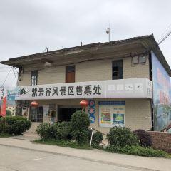 Ziyungu User Photo