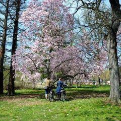Fairmount Park User Photo