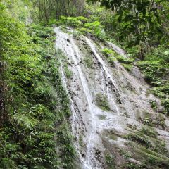 鳳凰山國家森林公園用戶圖片