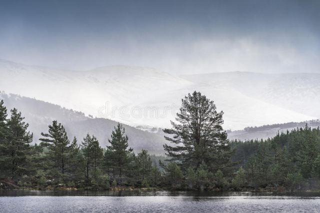 赫爾維林山