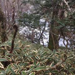 1100 Highland Wetland User Photo