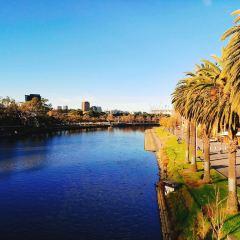 Princes Bridge User Photo