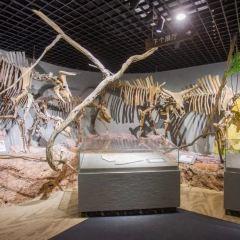 Qiandaohuziran Museum User Photo