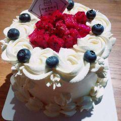 康泰鮮奶蛋糕房用戶圖片
