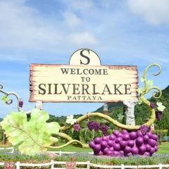 銀湖葡萄園用戶圖片