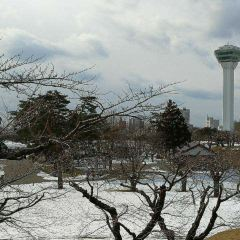 Goryokaku Tower User Photo
