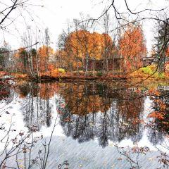 觀音湖生態文化旅遊度假區用戶圖片