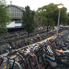 阿姆斯特丹博物館用戶圖片