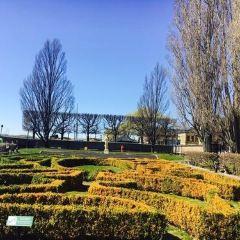 King's Garden User Photo