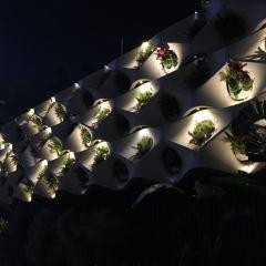 The Garden of Stars User Photo