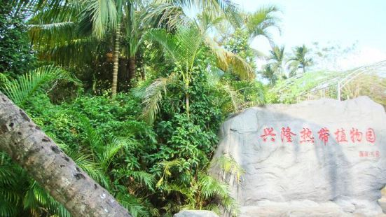 熱帶森林博覽園