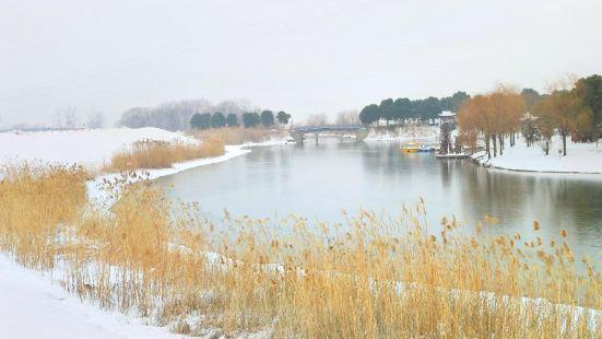 濱江濕地公園