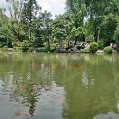 리두이(이퇴) 공원 여행 사진