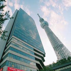 도쿄 스카이 트리 여행 사진