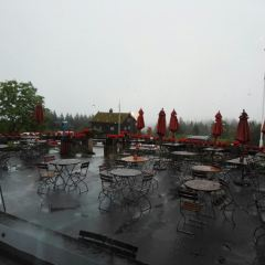 Frognerseteren Restaurant and Cafe用戶圖片