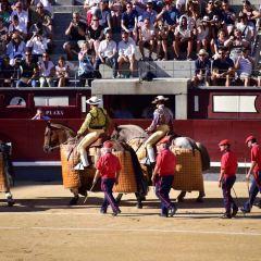 Las Ventas Tour User Photo