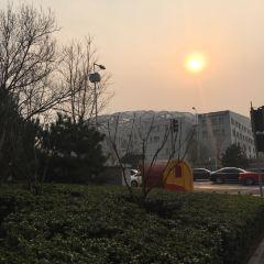 냐오차오(올림픽 주경기장) 여행 사진