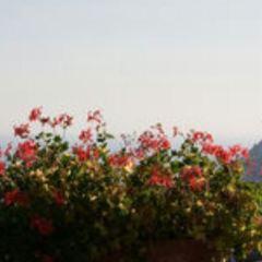 Villa Cimbrone User Photo