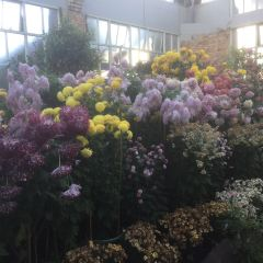 Winter Garden User Photo