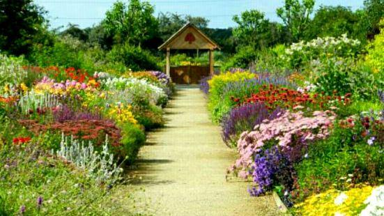 Breezy Knees Gardens and Nursery