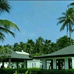 Phuket Thaihua Museum User Photo