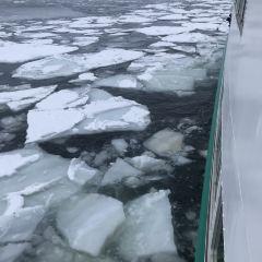 網走流冰觀光破冰船極光號用戶圖片