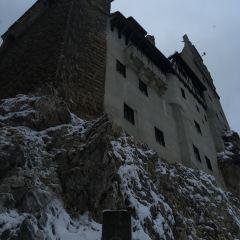 布朗城堡用戶圖片