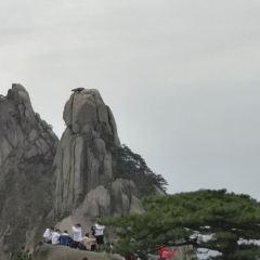 송서조천도 여행 사진