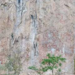 Shizi Mountain Forest Park User Photo