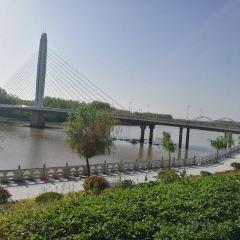 鎮潢橋用戶圖片