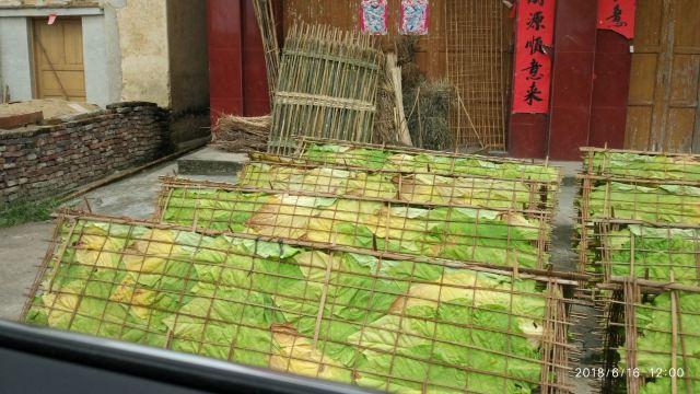 Hakka round houses in Hezhou