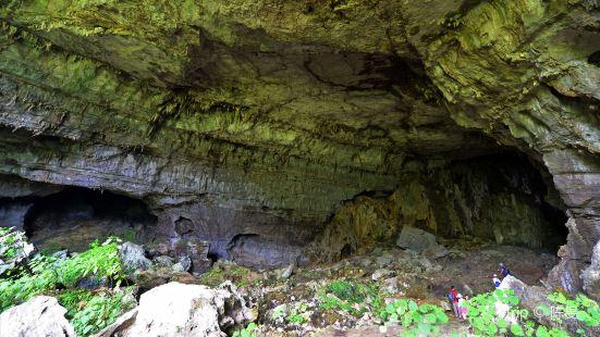 荔波茂蘭國家級自然保護區