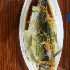 福山魚村用戶圖片