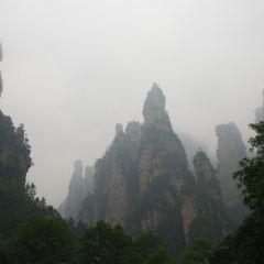 Shuiraosimen User Photo