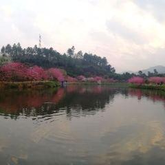 Jinshi Park User Photo