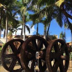 Maui Tropical Plantation User Photo