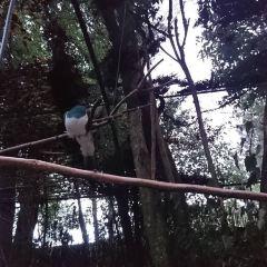 Kiwi Birdlife Park User Photo