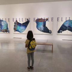 菩提樹下博物館用戶圖片