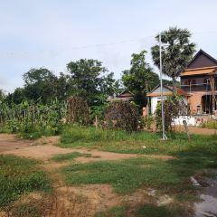 大榕樹農村用戶圖片