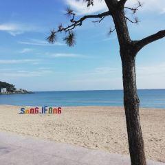 송정 해수욕장 여행 사진