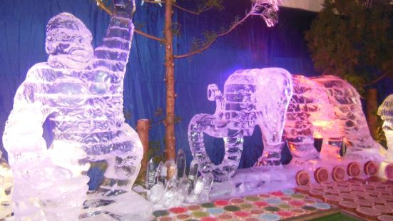 濟州島3D冰雕館