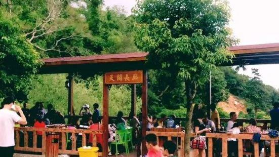 黄花山公园内这家综合民宿和特色土窖鸡农家菜的爱来林山庄值得推